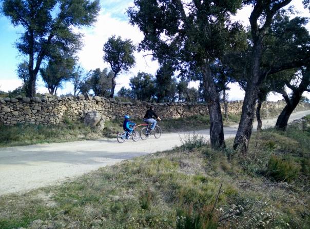 Bicicletes per la pirinexus