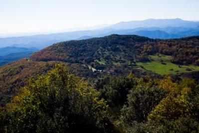 Puig Prunès - Fageda del Mas Nou -Coll del Portell